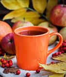 Tea Forté Blood Orange Tea
