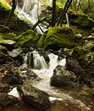 Bay Area Waterfall Hikes