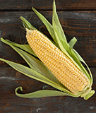 Brentwood Corn Is Here!
