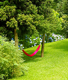 The Backyard Hammock