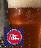 Pliny the Elder for Dad