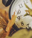 Fall Back! Daylight Saving Time Ends Tonight.