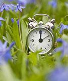 Daylight Saving Time begins tonight—so, spring forward!