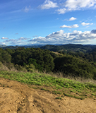 East Bay Parks Are Open