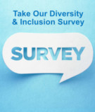Customer Diversity and Inclusion Survey