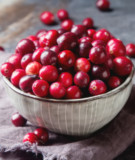 Fresh Cranberries for the Holidays