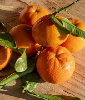 Satsuma Mandarines are Here!